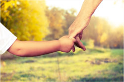 Family law and domestic violence
