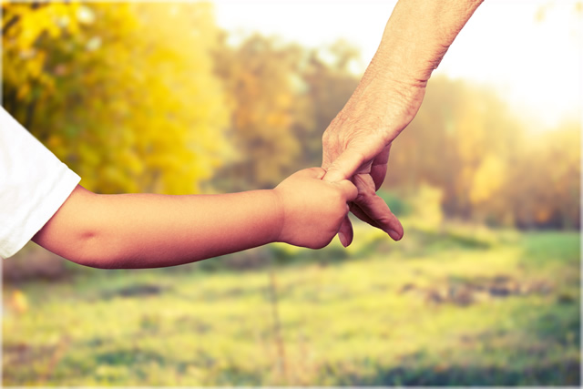 Child support and child custody lawyer Indianapolis